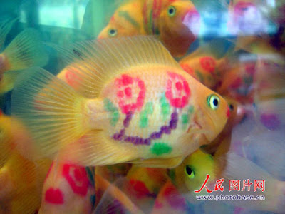 parrot tattoo. Tattooed Parrot Fish