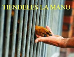 AYUDAR PUEDE CAMBIAR EL MUNDO