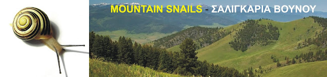 MOUNTAIN SNAILS - ΣΑΛΙΓΚΑΡΙΑ ΒΟΥΝΟΥ