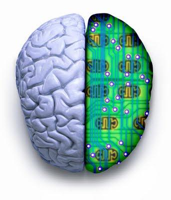 imb cerebro sinaptr%C3%B3nico