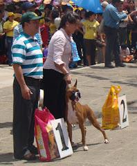 Alma Gana Best In Show Feria Piedecuesta 30-06-08