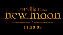 TWILIGHTERS MEXICO METROFLOGS