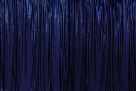 Navy Blue Sequin