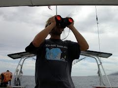 da captain