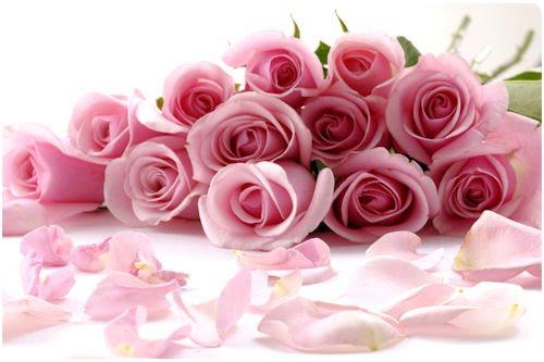 Imágenes de rosas para el Día de las Madres