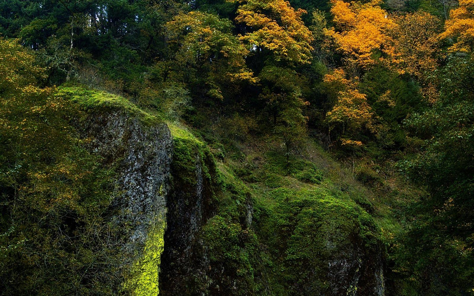 Lugares del mundo y sus paisajes mas bellos Facebook - Imagenes De De Paisajes