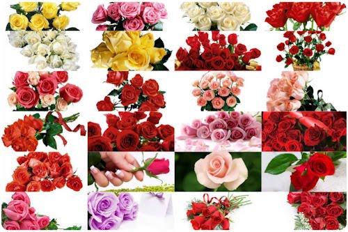 Imágenes de flores para el Día de las Madres (recopilación) Más de  100 imágenes gratuitas