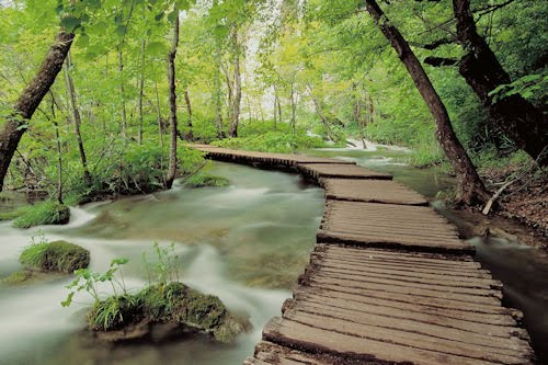 10 paisajes naturales (cada lugar incluye su nombre)