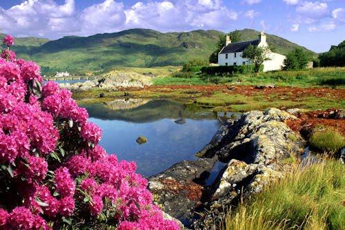 La sorprendente belleza de la naturaleza (5 elementos)