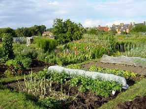 an allotment