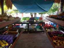 Produce market in Akumal