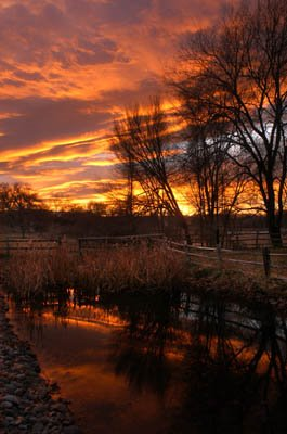 Fall Sunset at Willow Pond