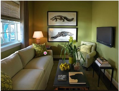 Design Living Room Ideas on Living Room Designs   Living Room Designs Ideas  Contemporary Green