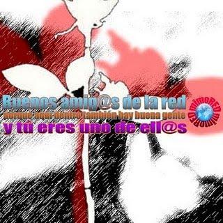 PREMIO B. AMIGOS DE LA RED