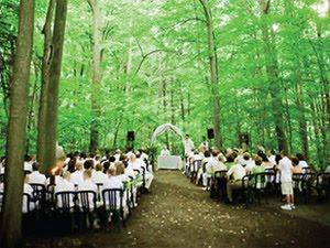 Elope Toronto Kortwright Centre Wedding In The Woods