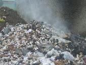 Poluição Ambiental - Novembro/2010