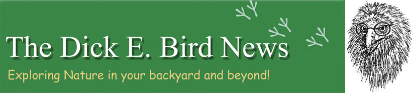 The Dick E. Bird News Online / No Longer in Print
