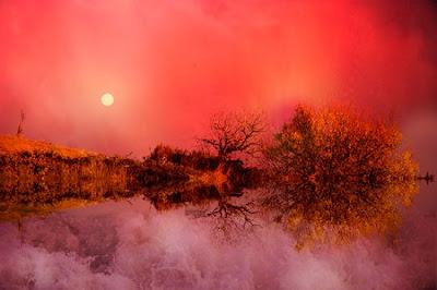 dreamland by roberto lorenzoni