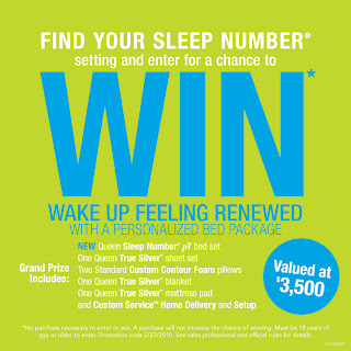 Sleepnumber.com/Winter - Www.SleepNumber.com Winter 2010 Sweepstakes