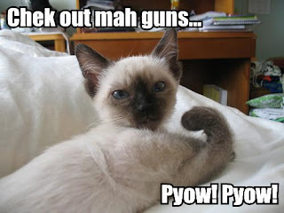 Random Internet Pics - Page 3 Lol-cats_gheck-out-my-guns
