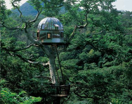 Las casas de arbol mas impresionantes del mundo taringa for Casas mas impresionantes del mundo