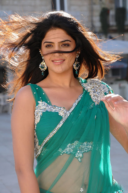 deeksha+seth ALLHOTACTRESSIN.BLOGSPOT.COM+%25284%2529 Actress Deeksha Seth in Hot Spicy Green Saree Wallpapers