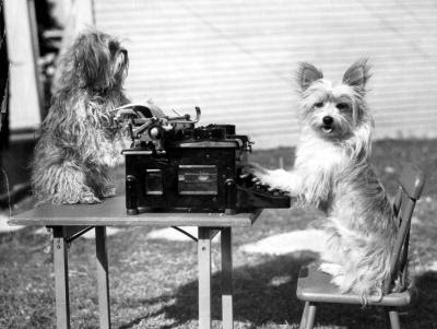 dogs on a typewriter