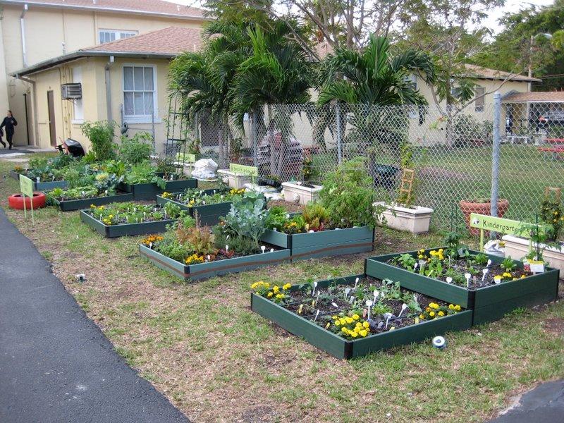Coconut Grove Elementary School Pta January 2011