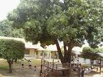 Colégio Santa Isabel