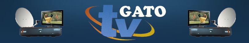 .::TV  GATO: :.  2010