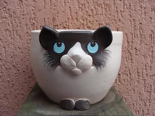 Gato Siamês Mascarado