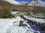 La nieve nos visita cada año, en julio-Agosto, transformando el paisaje.