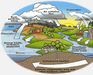 environment water pollution - photo #44