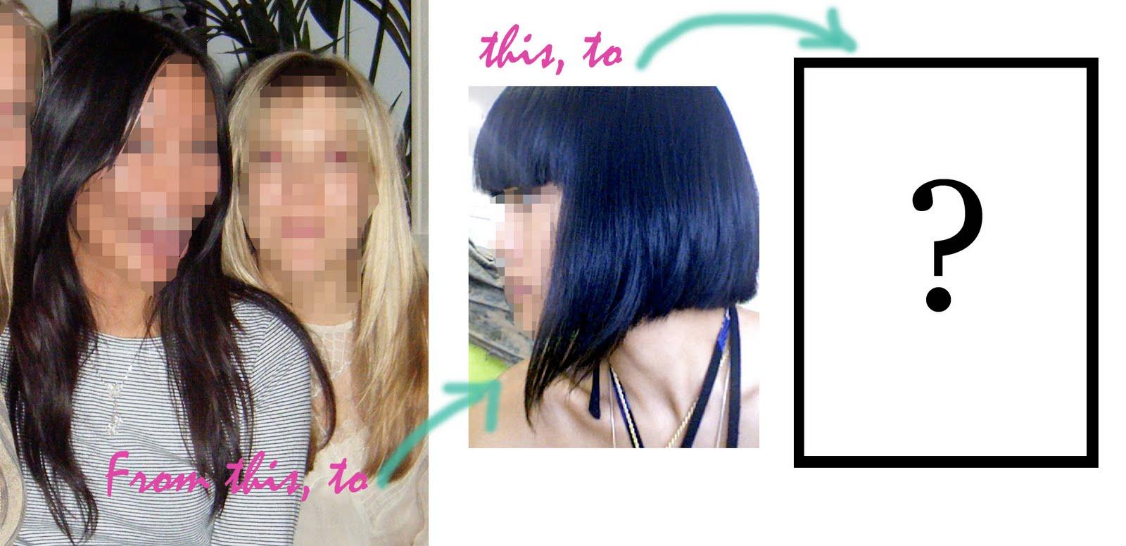 http://4.bp.blogspot.com/_EoB-OBYX850/S-w2UE3puwI/AAAAAAAABAw/-14DvBqz5hk/s1600/Hair+decisions.jpg