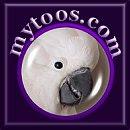 Mytoos.com