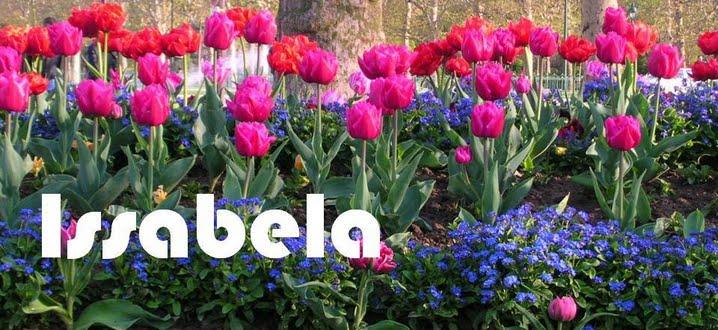 Issabela