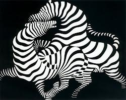 el op art de las cebras