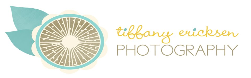 Tiffany Ericksen Photography