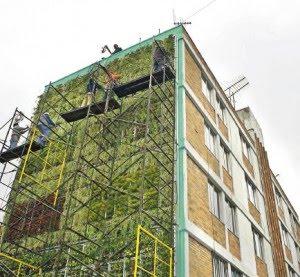 Muros verdes en la ciudad 5 cajas verdes for Techos y paredes verdes