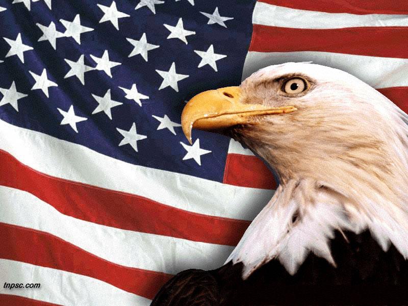 golden eagle wallpaper. hot Free Golden Eagle