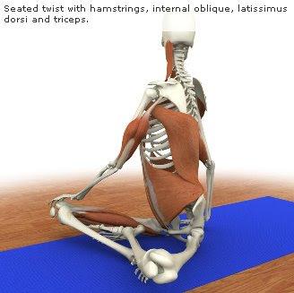 posturas de Hatha Yoga en imágenes