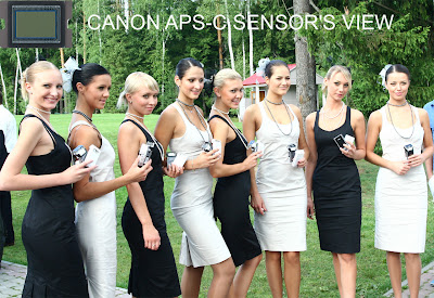 Canon APS-C sensor's view
