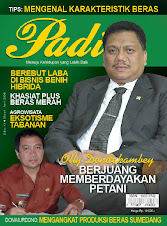 Majalah Padi Edisi 13 2008