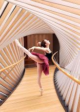 Porque a Dança faz parte de mim...