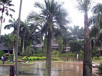 an image of cyberview lodge's swimming pool