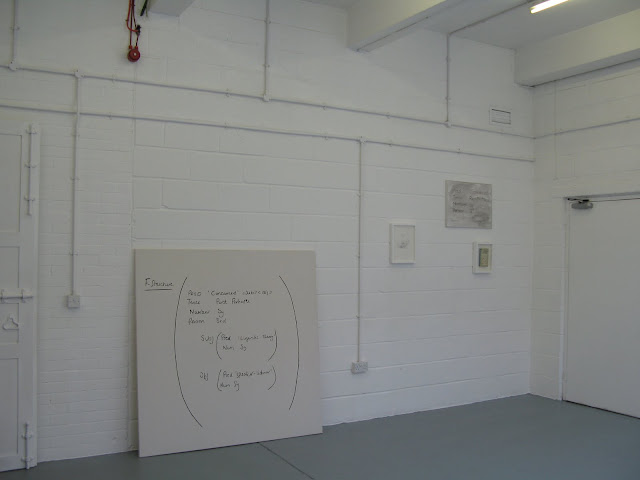 Colourless Green Ideas Sleep Furiously, installation view SPACE 2010