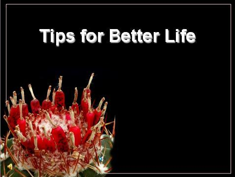 tips for better life Tips for better life - authorstream presentation slide 21: astrophytum coahuilense realize that life is a school and you are here to learn.