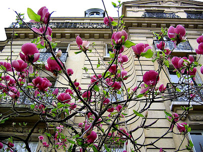 I love Paris in the spring time, I love Paris... You know the song? Taken near the Champs de Mars. The building is a beauty too. (copyright © langaloo winston, TrekEarth)