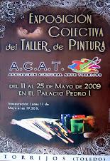 A.C.A.T. TORRIJOS (Toledo)  2009