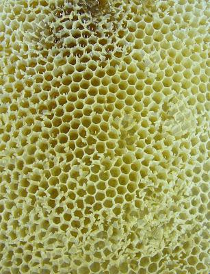 honey combe
